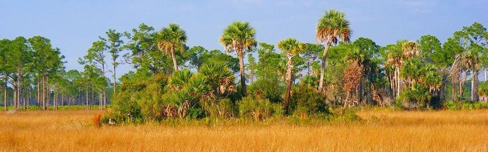 Florida Pole Barn Kits
